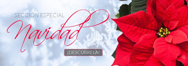 Sección especial Navidad